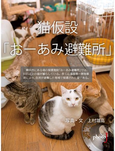 猫仮設「おーあみ避難所」表紙